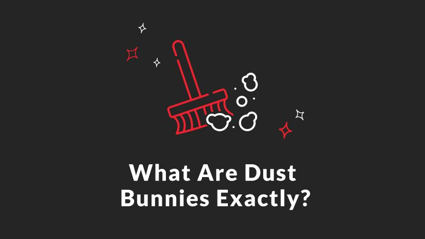 What are Dust Bunnies Exactly?