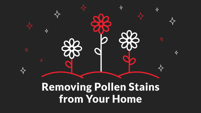 pollen stains